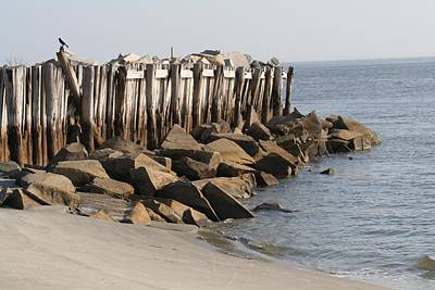 Low Tide On Sullivans Island Poster