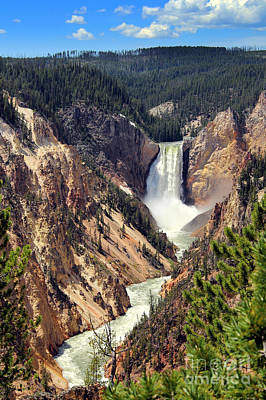 Poster featuring the photograph Lower Falls Of Yellowstone by Jemmy Archer