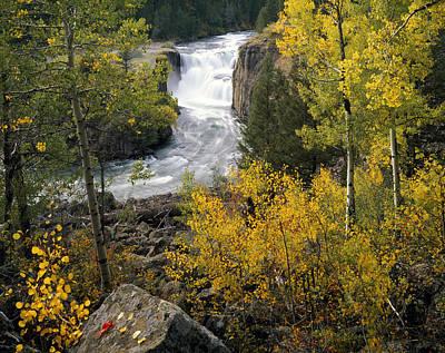 Lower Mesa Autumn Poster