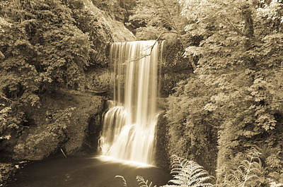 Lower South Falls In Sepia Poster