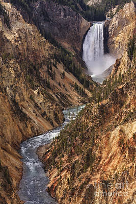 Lower Yellowstone Falls II Poster by Mark Kiver