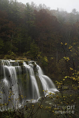 Ludlowville Falls In Autumn I Poster by Michele Steffey