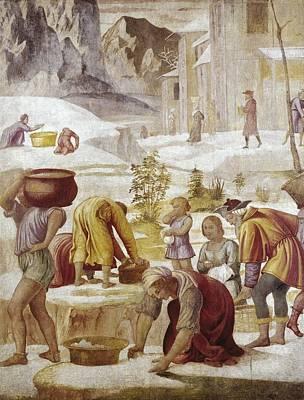 Luini, Bernardino 1480-1532. The Poster by Everett
