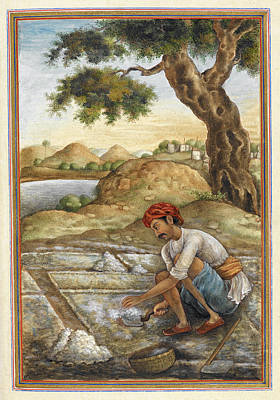 Lunia Salt-digger Poster by British Library