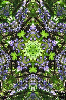 Lupine Pentagram Poster