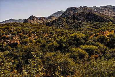 Poster featuring the photograph Lush Foothills No.1 by Mark Myhaver