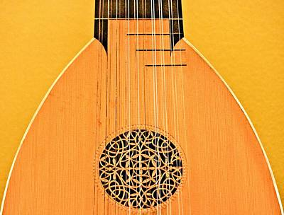 Lute Poster by John Illingworth