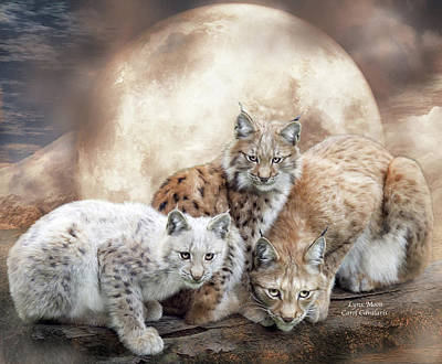 Lynx Moon Poster