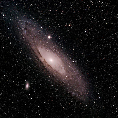 M 31 The Andromeda Galaxy Poster by Alan Vance Ley