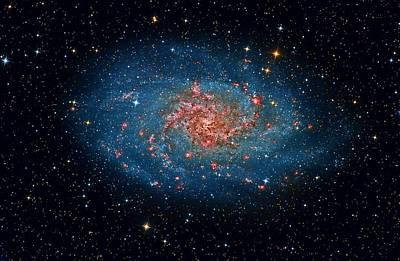 M33 Spiral Galaxy Poster