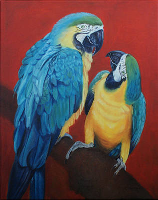 Macaws   Poster