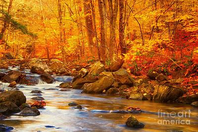 Macedonia Brook State Park Autumn Colors Poster