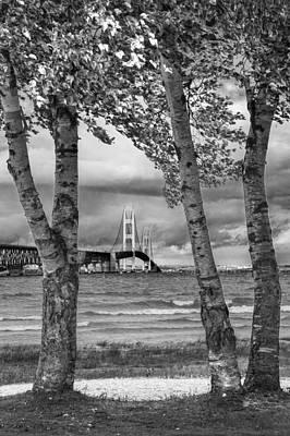 Mackinaw Bridge With Birch Trees By The Straits Of Mackinac Poster