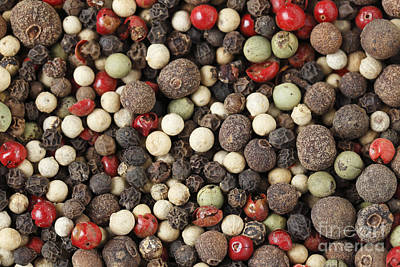 Macro Of Mixed Peppercorns Poster by Paul Cowan