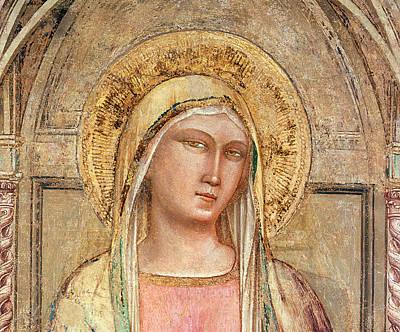 Madonna Del Parto Poster by Taddeo Gatti