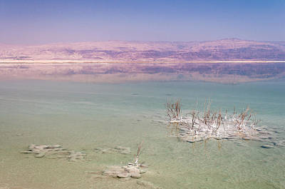 Magic Colors Of The Dead Sea Poster