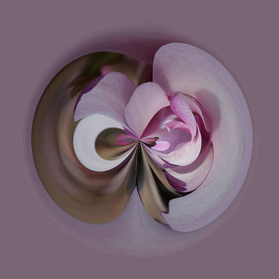 Poster featuring the photograph Magnolia Blossom Series 1304 by Jim Baker