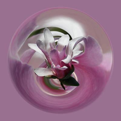 Magnolia Blossom Series 708 Poster