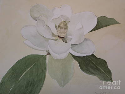 Poster featuring the painting Magnolia Delight by Nancy Kane Chapman