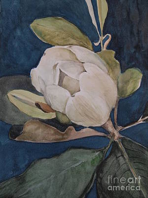 Poster featuring the painting Magnolia Evening by Nancy Kane Chapman