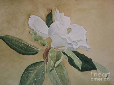 Magnolia San Marino Poster by Nancy Kane Chapman