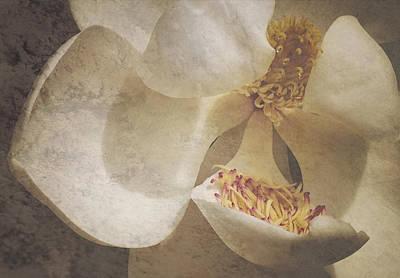 Magnolia Ya Sweet Thang Poster