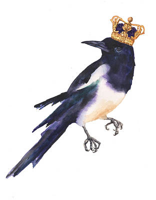 Magpie Watercolor Poster by Alison Fennell