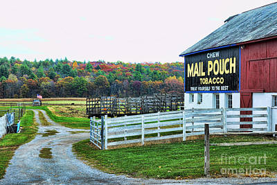 Mail Pouch Tobacco Barn In The Fall Poster by Paul Ward
