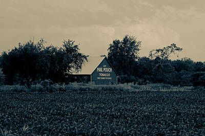 Mail Pouch Tobacco Barn Poster by Off The Beaten Path Photography - Andrew Alexander