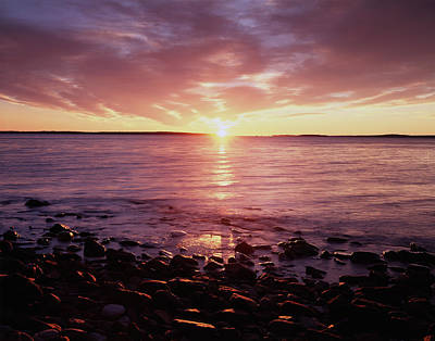 Maine, Sunrise Over The Rocky Shoreline Poster by Christopher Talbot Frank