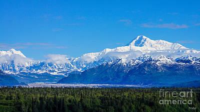 Majestic Mt Mckinley Poster by Jennifer White