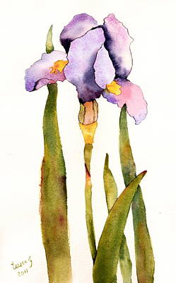 Majestic Purple Iris Poster by Teresa Tilley