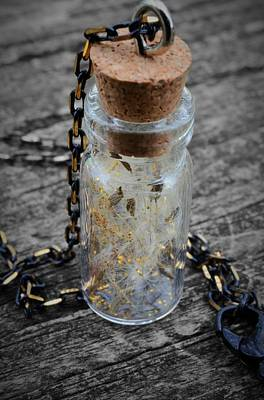 Poster featuring the photograph Make A Wish - Dandelion Seed In Glass Bottle With Gold Fairy Dust Necklace by Marianna Mills