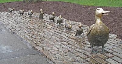Make Way For Ducklings Poster by Barbara McDevitt