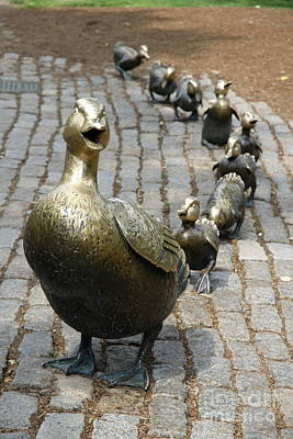 Make Way For Ducklings Poster by Christiane Schulze Art And Photography