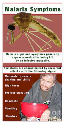 Malaria Symptoms Poster by Cmsp