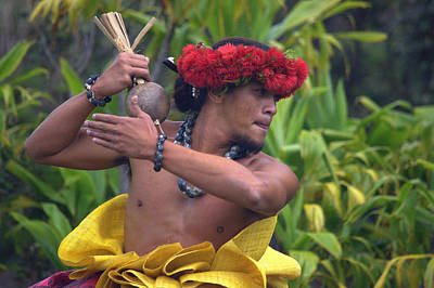 Male Hula Dancer With Small Gourd Instrument Poster