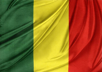 Mali Flag Poster by Les Cunliffe