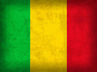 Mali Flag Vintage Distressed Finish Poster by Design Turnpike