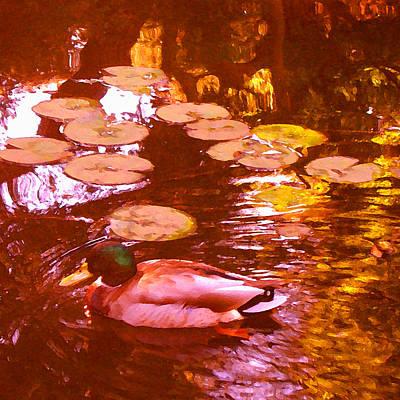 Mallard Duck On Pond 3 Square Poster