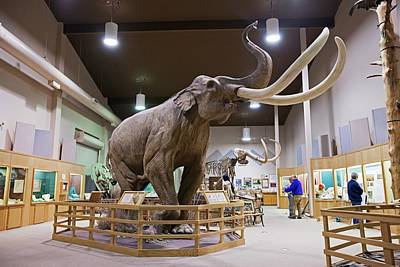 Mammoth Exhibit Poster by Jim West