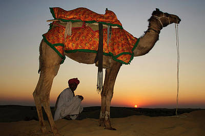Man Sitting With His Camel At Sunset Poster by Piper Mackay