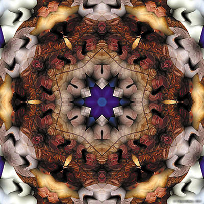 Poster featuring the digital art Mandala 16 by Terry Reynoldson