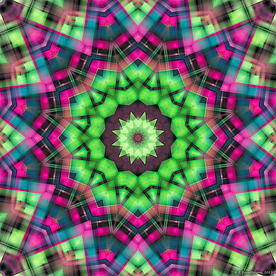 Poster featuring the digital art Mandala 29 by Terry Reynoldson