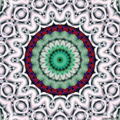Poster featuring the digital art Mandala 9 by Terry Reynoldson