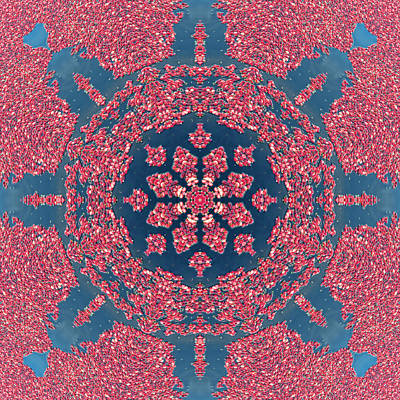 Mandala Of Cranberries Poster by Beth Sawickie
