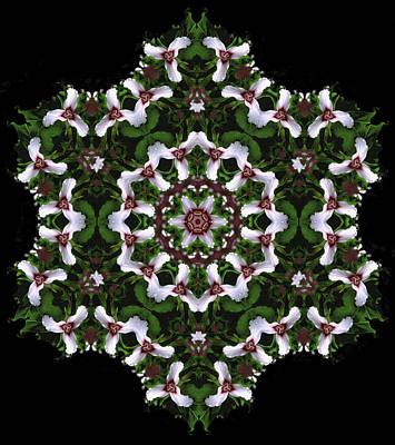 Mandala Trillium Holiday Poster