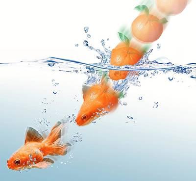 Mandarin Turning Into Gold Fish Poster by Leonello Calvetti