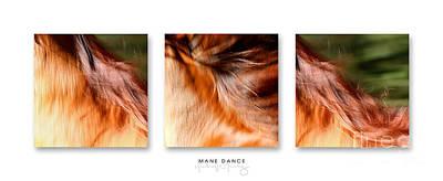 Mane Dance Triptych Poster