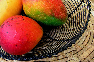 Mango In A Black Wire Basket Poster by James Temple